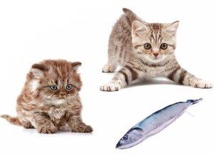 Catnip vis katten speelgoed (20cm) blauw