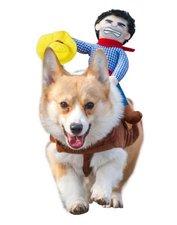 Kat of hondenjas met rodeo cowboy M