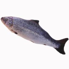 Catnip vis katten speelgoed (40cm) blauw