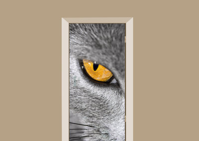 Deursticker kattenoog