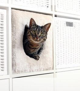 Kat Huis Voor Ikea Kallax Kast Kopen Krabpaalwebshop